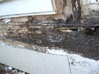 Synthetic Stucco Lanier Property Inspections